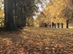 Overzicht van 32 prachtige parken in Ierland – EN